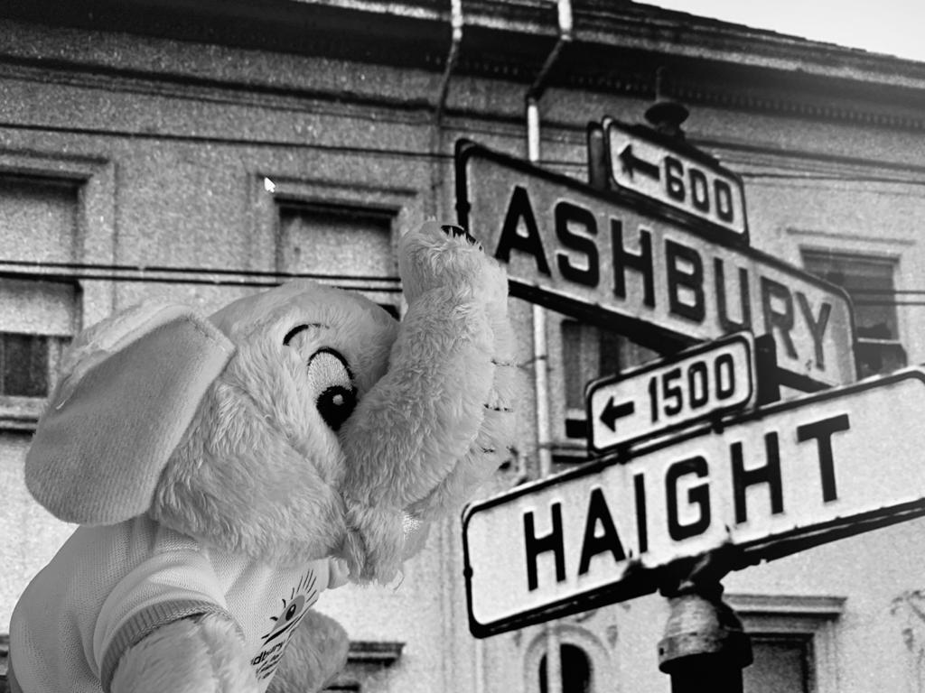 http://Close-up%20of%20Brad%20next%20to%20the%20Haight-Ashbury%20sign%20in%20San%20Francisco.