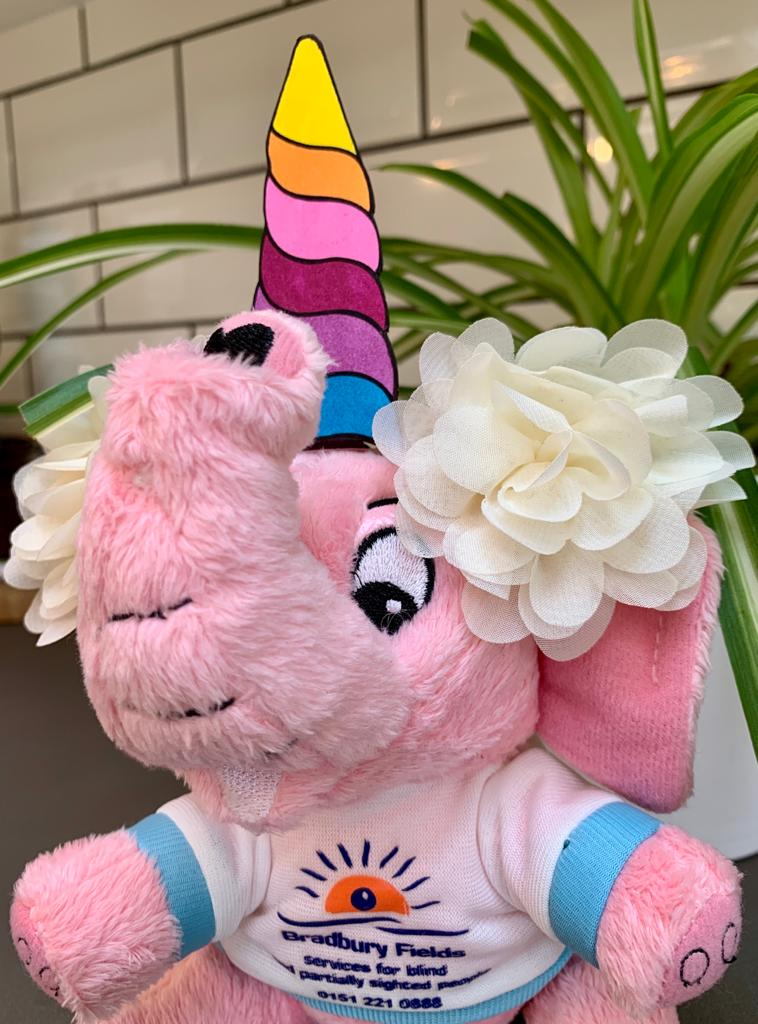 http://Close-up%20of%20Brad%20wearing%20a%20rainbow%20unicorn%20horn%20and%20flowers%20on%20his%20head.